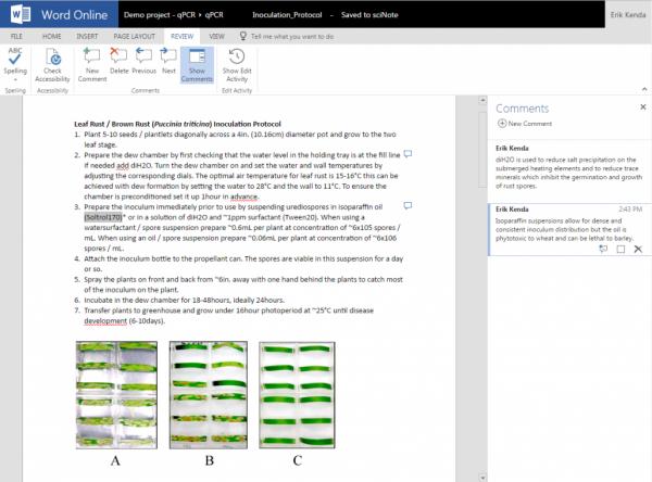 Word Online document